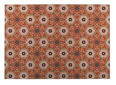 Kavka Rust/Gray Indoor/Outdoor Doormat; Rectangle 5' x 7'