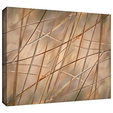Highland Dunes 'Deschampsia' Photographic Print on Wrapped Canvas; 32'' H x 48'' W