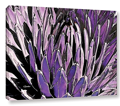 Varick Gallery 'Queen Victoria Agave' Photographic Print on Wrapped Canvas; 36'' H x 48'' W