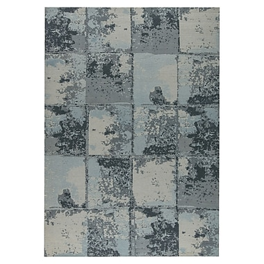 M.A. Trading Cleveland Hand-Woven Gray Area Rug; 2' x 3'