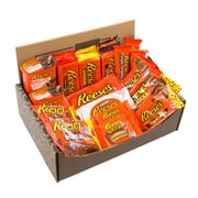 REESE'S The Ultimate Reese'S Fan Candy Variety Box, Care Package, 22/Count (700-00012)