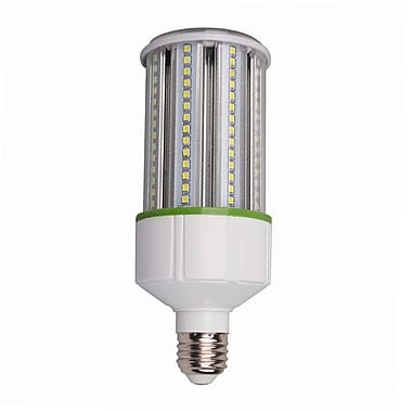 Northern Stars – Ampoule 120V 5W B10 DEL 80334, intensité variable, blanc froid, paq./2