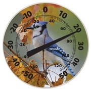 "BIOS Weather Dial Thermometer, Blue Jay Theme, 12"" (514BC)"