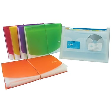 Filexec Frosted 13 Pocket Expanding File, Letter size, Assorted Colours, 4/Pack