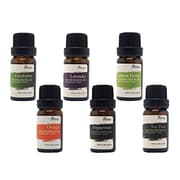 Pursonic® 6 Piece Pure Essential Aromatherapy Oils Gift Set (A06)