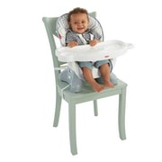 Fisher-Price® Geo Meadow SpaceSaver High Chair, Multicolor (DKR70)
