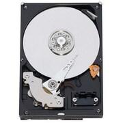 WD® Caviar® RE2 WD1601ABYS 160GB SATA/300 3 Gbps Hot-Swap Internal Hard Drive, Black/Silver
