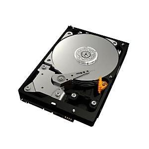 WD® Caviar® Blue™ WD2500AAJS 250GB SATA/300 3 Gbps Hot-Swap Internal Hard Drive, Black/Silver