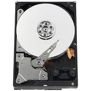 WD® AV-GP WD5000AVVS 500GB SATA/300 3 Gbps Hot-Swap Internal Hard Drive, Black/Silver