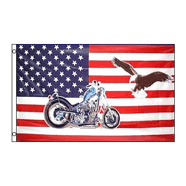 FlagsImporter USA Motorcycle Eagle Traditional Flag
