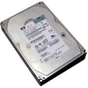 HP® 417192-004 300GB SAS 6 Gbps Hot-Plug Internal Hard Drive, Black/Silver