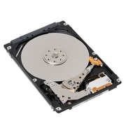 lenovo™ ThinkServer 4XB0F28677 1TB SATA 6 Gbps Internal Hard Drive, Black/Silver