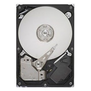 Seagate® BarraCuda LP ST32000542AS 2TB SATA 3 Gbps Hot-Swap Internal Hard Drive, Black/Silver