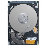 Seagate® Momentus 5400.6 160GB SATA 3 Gbps Hot-Swap Internal Hard Drive, Black/Silver