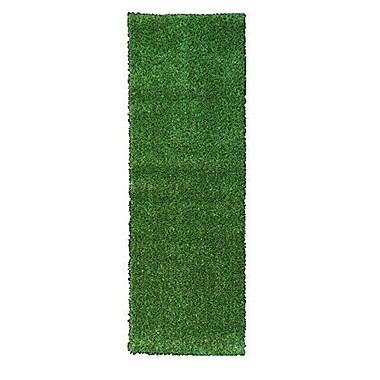 Berrnour Home Grassland Green Indoor/Outdoor Area Rug; Runner 2'7'' x 9'10''