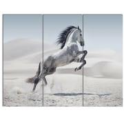 DesignArt 'Galloping White Horse' 3 Piece Photographic Print on Canvas Set