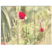 DesignArt 'Meadow w/ Wild Poppy Flowers' 3 Piece Photographic Print on Canvas Set