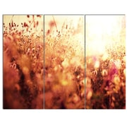 DesignArt 'Brown Shade Flowers in Sunshine' 3 Piece Photographic Print on Canvas Set