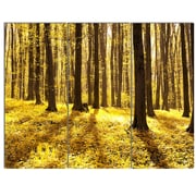 DesignArt 'Bright Green Forest at Sunset' 3 Piece Photographic Print on Canvas Set