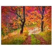 DesignArt 'Bright Colorful Fall Trees in Forest' 3 Piece Photographic Print on Canvas Set