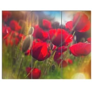 DesignArt 'Thick Red Poppy Flowers' 3 Piece Photographic Print on Canvas Set