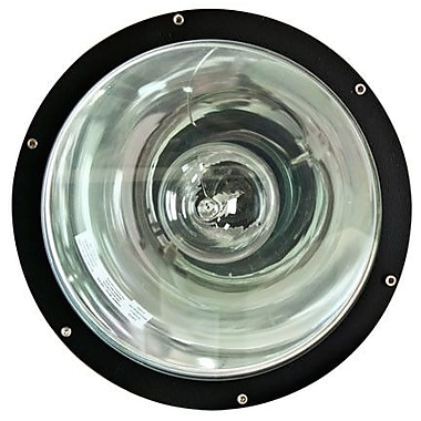 Dabmar Lighting Mogul 1-Light Well Light