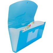 JAM Paper® 13 Pocket Expanding File, Check Size, 5 x 10.5, Blue, Sold Individually (221618980)