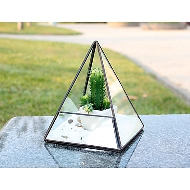WGVInternational Pentahedron Pyramid Glass Terrarium