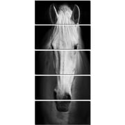 DesignArt 'White Horse Black and White' 5 Piece Photographic Print on Canvas Set
