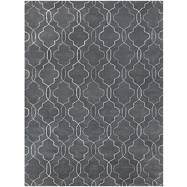 AMER Rugs City Hand-Tufted Gray Area Rug; 7'6'' x 9'6''