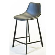 Gingko Home Furnishings Paula 24'' Bar Stool (Set of 2)