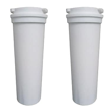 Crucial Refrigerator/Icemaker Water Purifier Filter (Set of 2)