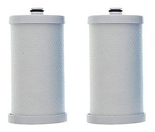 Crucial Frigidaire Refrigerator/Icemaker Water Purifier Filter (Set of 2) WYF078279707574