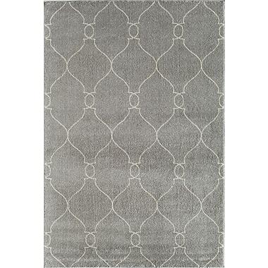 Rugs America Hudson Platinum Handmade Gray Area Rug; 7'10'' x 10'10''