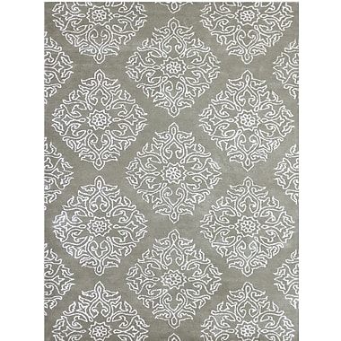 AMER Rugs Serendipity Hand-Tufted Beige Area Rug; 5' x 8'