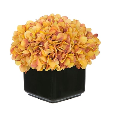 House of Silk Flowers Artificial Hydrangea in Small Black Cube Ceramic; Gold/Burgundy
