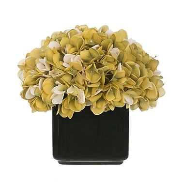 House of Silk Flowers Artificial Hydrangea in Small Black Cube Ceramic; Sage/Cream