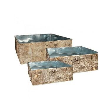 CYSExcel 3 Piece Natural Birch Wood Wrap Zinc Square Vase Set