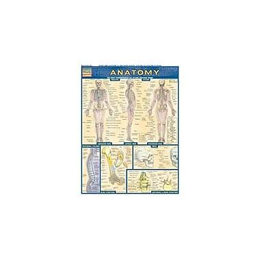 Barcharts Publishing Anatomy Workbook By Perez, Vince, Grade 7 - Grade 12 [eBook]