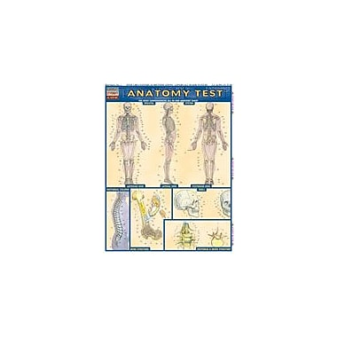 Barcharts Publishing Anatomy Test Workbook, Grade 7 - Grade 12 [eBook]