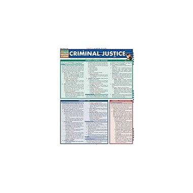Barcharts Publishing Criminal Justice Workbook By Pittaro, Michael, Grade 12 [eBook]