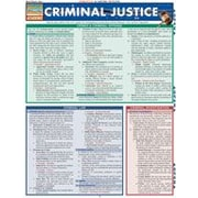 Barcharts Publishing Criminal Justice Workbook By Pittaro, Michael, Grade 12 [eBook]