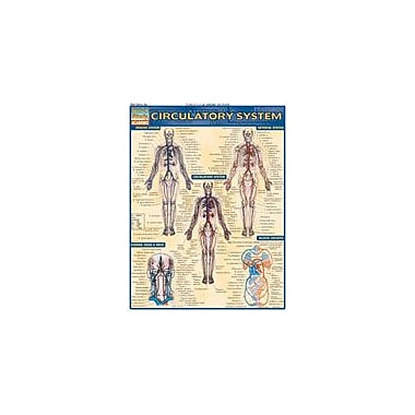 Barcharts Publishing Circulatory System Workbook By Perez, Vince, Grade 10 - Grade 12 [eBook]