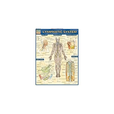 Barcharts Publishing Lymphatic System Workbook By Perez, Vince, Grade 12 [eBook]