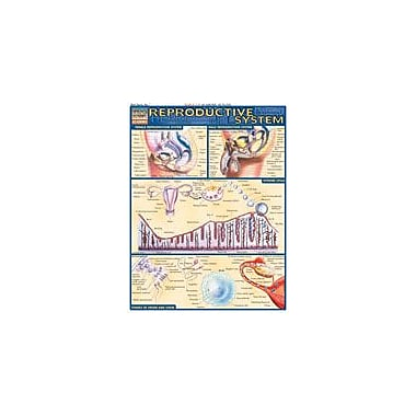 Barcharts Publishing Reproductive System Workbook By Perez, Vince, Grade 12 [eBook]