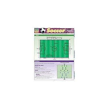 Barcharts Publishing Soccer Basics Workbook By Berner, Steve, Grade 7 - Grade 12 [eBook]