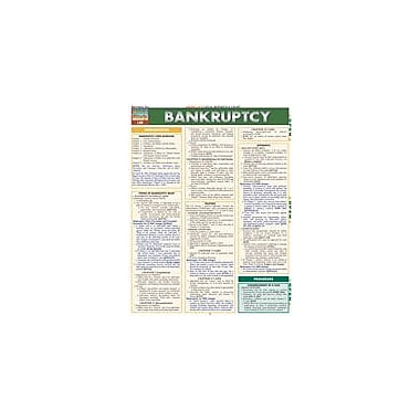 Barcharts Publishing Bankruptcy Workbook By Gerard, Greg, Grade 12 [eBook]