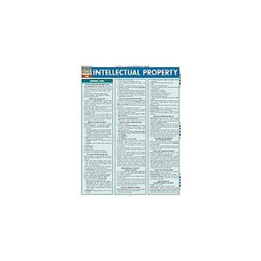 Barcharts Publishing Intellectual Property Law Workbook, Grade 12 [eBook]