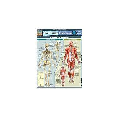Barcharts Publishing Anatomy Fundamentals: Life Science Workbook By Perez, Vince, Grade 7 - Grade 12 [eBook]