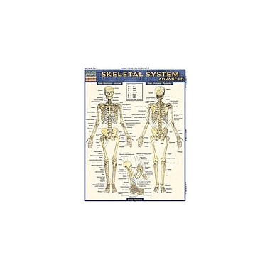 Barcharts Publishing Skeletal System: Advanced Workbook By Evans-Marshall, Shelly, Grade 6 - Grade 12 [eBook]
